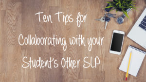 Ten Tips for Collaborating with Your Student's Other SLP: Guest Post