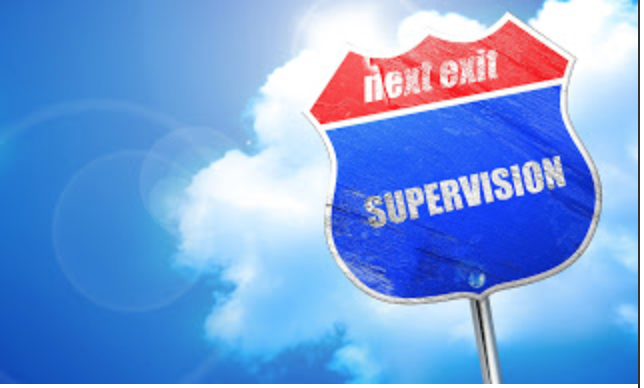 Supervision and Mentoring: Guest Post by Speech to the Core
