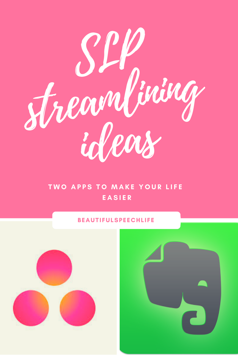 SLP Streamlining Ideas: Guest Post by Beautiful Speech Life