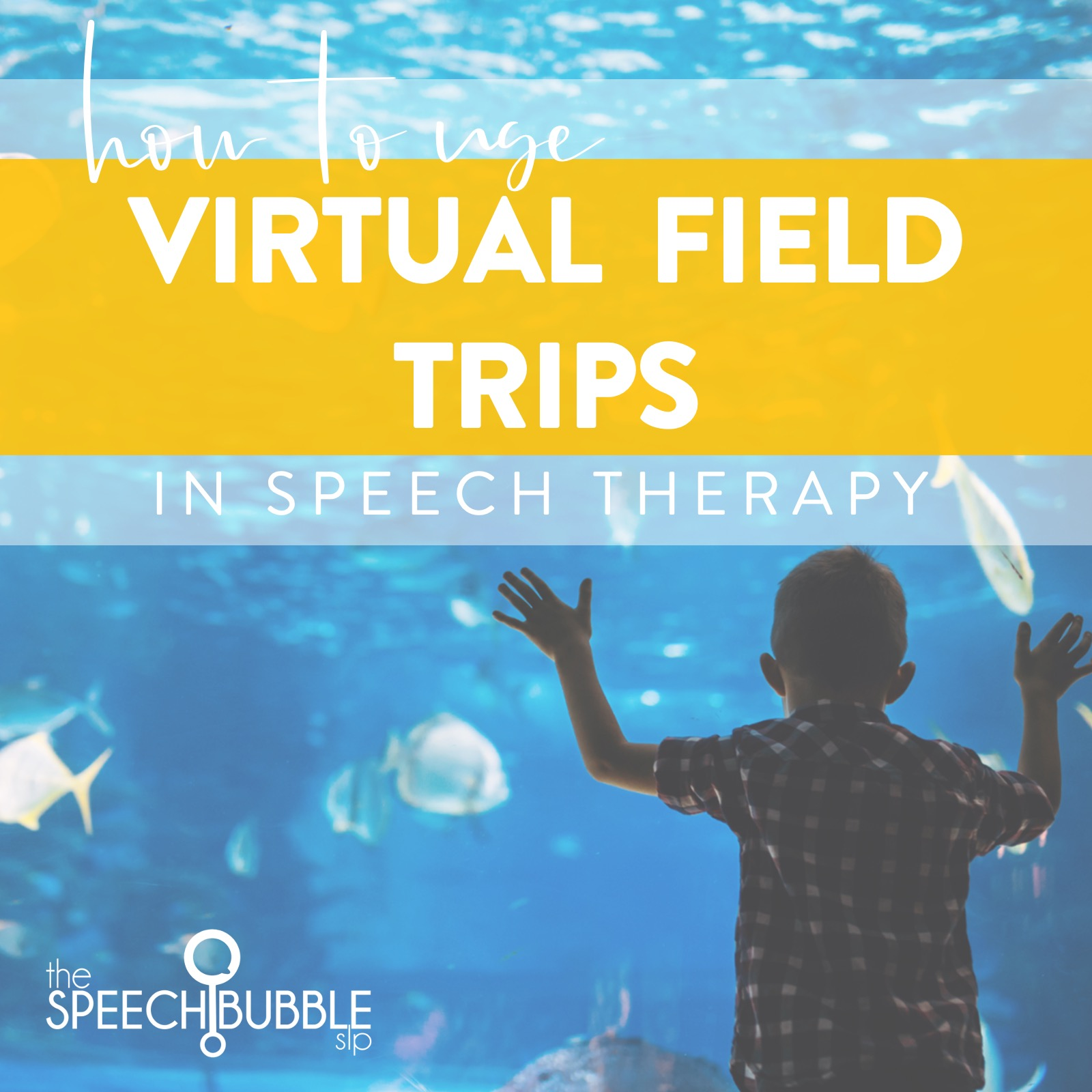 Virtual Field Trips in Speech Therapy