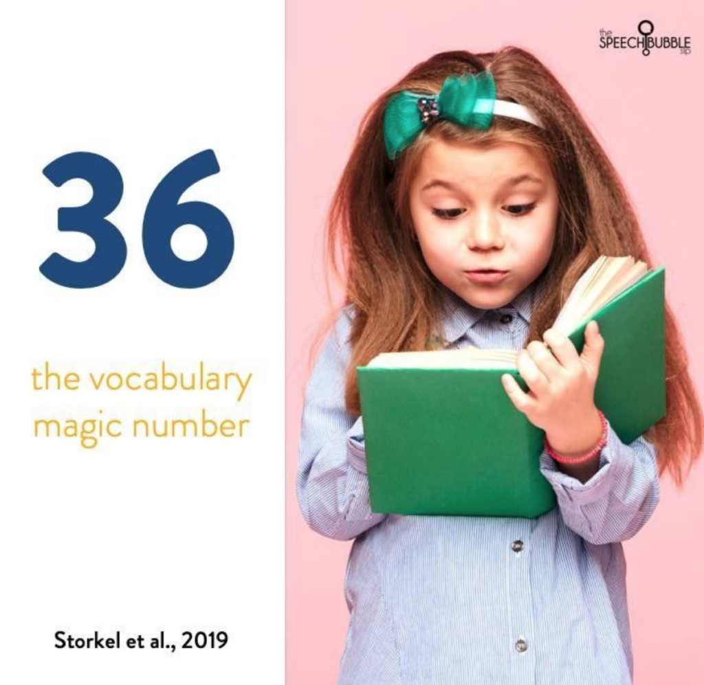 Vocabulary in Speech Therapy
